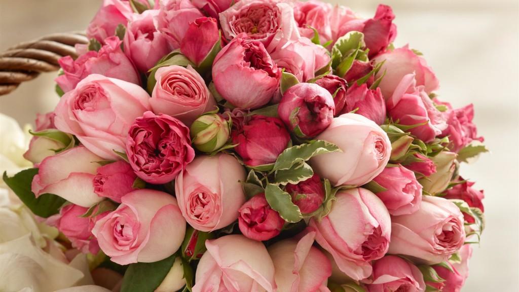 картинки на рабочий стол цветы самые красивые № 517011 бесплатно