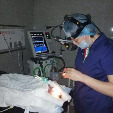 В Алтайском крае прооперировали ребенка с заболеванием сетчатки глаз весом чуть больше килограмма