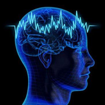 Школа эпилепсии (второй цикл)